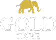 Gold Care Shoe Care Products